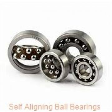 PT INTERNATIONAL 1319K  Self Aligning Ball Bearings