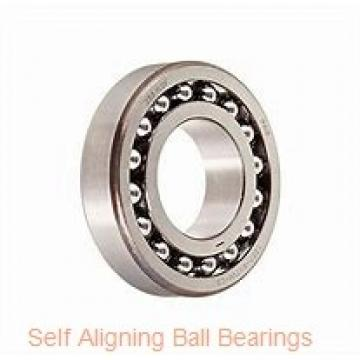 NSK 1206TN  Self Aligning Ball Bearings