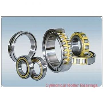 3.75 Inch | 95.25 Millimeter x 5.512 Inch | 140 Millimeter x 2.625 Inch | 66.675 Millimeter  ROLLWAY BEARING B-216-42  Cylindrical Roller Bearings