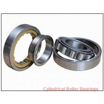 4.313 Inch | 109.55 Millimeter x 4.921 Inch | 125 Millimeter x 2.375 Inch | 60.325 Millimeter  ROLLWAY BEARING B-214-38-70  Cylindrical Roller Bearings