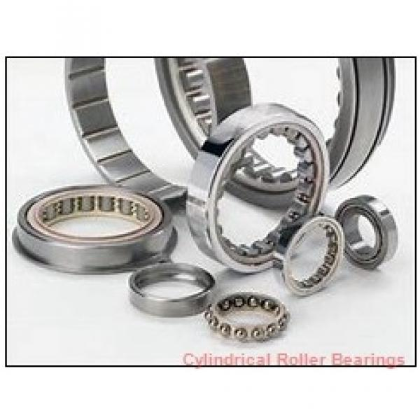 1.181 Inch   30 Millimeter x 2.441 Inch   62 Millimeter x 0.813 Inch   20.65 Millimeter  ROLLWAY BEARING D-206-13  Cylindrical Roller Bearings #1 image