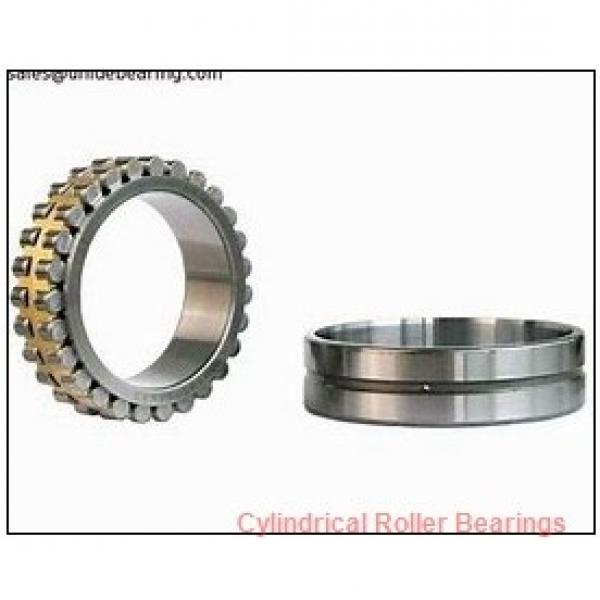 FAG NU314-E-M1A  Cylindrical Roller Bearings #1 image