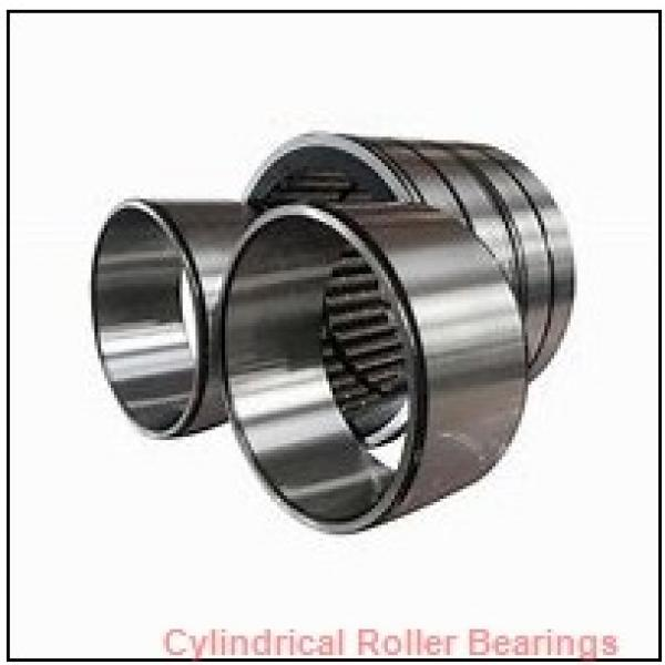 2.559 Inch | 65 Millimeter x 4.724 Inch | 120 Millimeter x 1.5 Inch | 38.1 Millimeter  ROLLWAY BEARING D-213  Cylindrical Roller Bearings #1 image